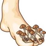 Podolog Sulechów Grzybica paznokci